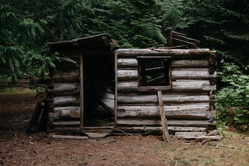 Old shed in the woods